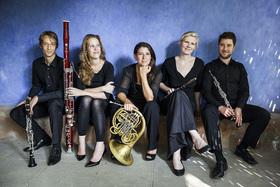 Bild: Acelga Quintett