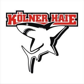 Schwenninger Wild Wings - Kölner Haie