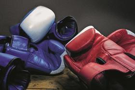 Bild: Das Herz eines Boxers