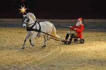Bild: Neustädter Weihnachtsgala - Neustädter Weihnachtsgala - die märchenhafte Pferdeshow zum Fest!