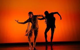 Bild: Jon Lehrer Dance Company - Shadows in Motion