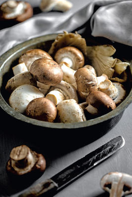 Bild: Aus Liebe zum Produkt: Kleine Pilzkunde