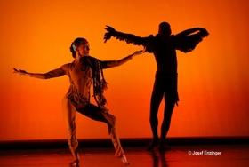 Bild: Shadows In Motion - Getanzte Geschichte(n) aus Licht und Schatten