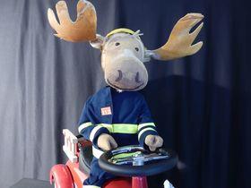Bild: Finn, der Feuerwehrelch - Figurentheater für Kinder ab 3 Jahren