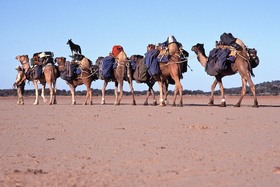 Bild: Katzer & Katzer: Red Earth Expedition - 7000 km zu Fuß durch Australiens Outback