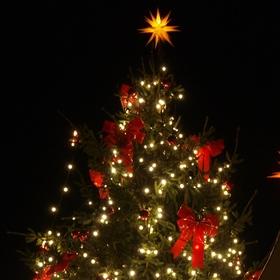 Bild: Weihnachtskonzert unter der Leitung von Hans-Joachim Scheitzbach