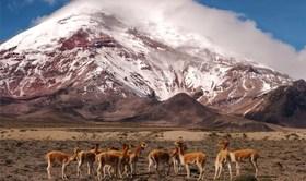 Bild: Südamerika querdurch – vom Pazifik zum Atlantik