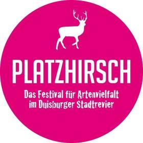 Bild: Platzhirsch Festival 2017 - Tagesticket Sonntag