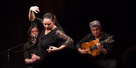 Bild: Juerga Flamenca - La Fiesta del Sur