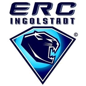 Bild: Straubing Tigers - ERC Ingolstadt