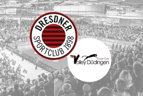 Bild: Dresdner SC - TS Volley Düdingen Powercats (SUI)