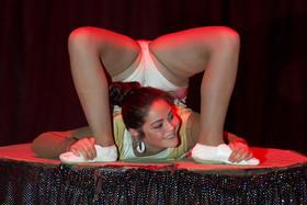 Bild: Circus Barus in Maintal - Wir bringen Freude in Ihre Stadt