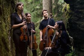 Bild: Quartetto Lyskamm (Mailand)
