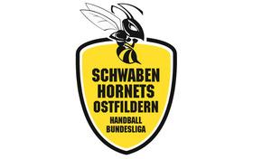Bild: Neckarsulmer Sport-Union - TV Nellingen