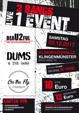 Bild: 3 Bands - 1 Event: beaU2ful, Dums&theBand, On the Fly