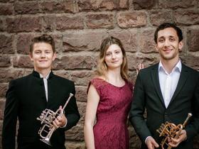 Bild: Trio Celeste - 2 Trompeten und Orgel