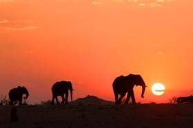 Bild: SÜDAFRIKA – Das Abenteuer