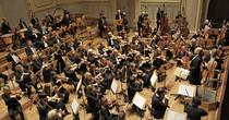 Bild: Haydn-Orchester Hamburg