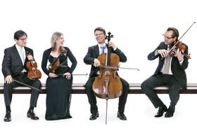 Bild: Alighieri Quartett