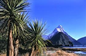 Bild: Neuseeland – hautnah – eine Liebeserklärung