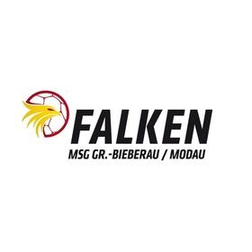 Bild: MSG Falken Groß Bieberau - TV Großwallstadt