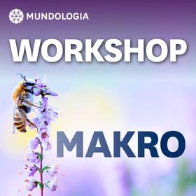 Bild: MUNDOLOGIA-Workshop: Makrofotografie