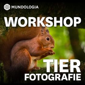 Bild: MUNDOLOGIA-Workshop: Tierfotografie