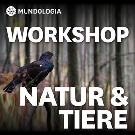 Bild: MUNDOLOGIA-Workshop: Natur- und Tierfotografie