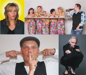 Bild: Schwabenvierer - Schwäbische Comedy Mixedshow