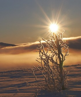 Bild: Andrea & Ronald Förster: Langlaufen im Rondane-Gebirge - Auf Brettern durch Norwegen