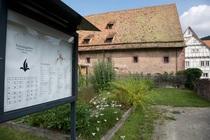 Bild: Lebendige Klostergärten
