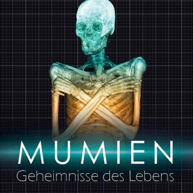 Bild: Mumien - Geheimnisse des Lebens