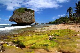 Bild: Abenteuer Fernweh - Karibik: Barbados, Grenada, Bonaire, Aruba, Kolumbien, Panama Kanal (Vortrag)