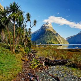 """Bild: Abenteuer Fernweh: Neuseeland """"Aotearoa"""" Land der langen weißen Wolke (Vortrag)"""