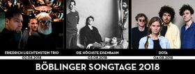 Bild: 5. Böblinger Songtage am See Festival-Ticket