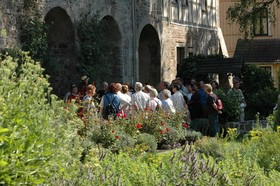 GartenAbendFührung -  Weißt du, wie der Sommer riecht?