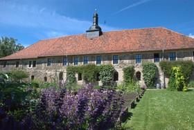 Gartenführung zum HarzerKlosterSonntag - Himmel und Erde verbunden: Klosterkräuter