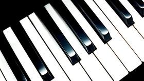 Bild: Saite an Saite - Abschlusskonzert des Klavier-Meisterkurses