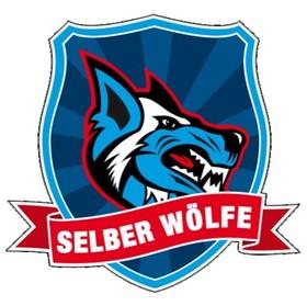 Bild: Eisbären Regensburg - Selber Wölfe