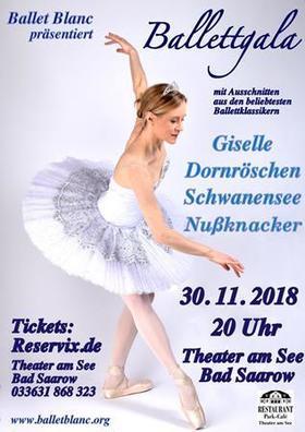 Bild: Ballettgala