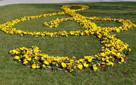 Bild: Frühlingskonzert der Musikschule Hennigsdorf