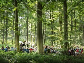 Bild: Waldkonzert Percussion