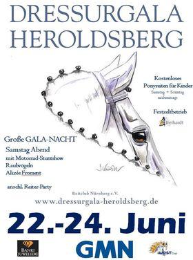 Bild: Dressurgala Heroldsberg - Dressurgala Heroldsberg