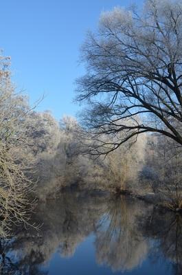 Bild: Winterliche Kurparkführung - Bad Bevensen