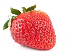 Bild: Lange Erdbeer Nacht