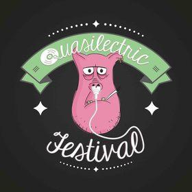 Bild: Quasilectric Festival 2018