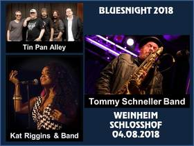 Bild: Bluesnight 2018 - Muddy's Club Open Air