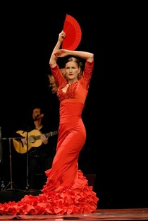 Bild: Flamenco unter Sternen