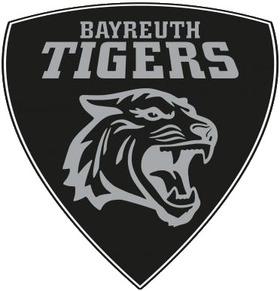 Eisbären Regensburg - Bayreuth Tigers