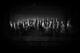 Bild: Lüneburger Symphoniker und Asita Djavadi